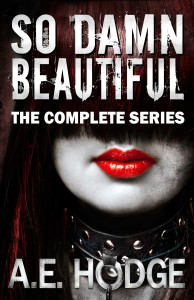 Cover Art for So Damn Beautiful: The Complete Series